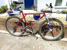 GT Karakoram 20 inch frame mountain bike
