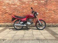 Lifan 125 NOT Honda Delivery Bike Yamaha ybr cbr cbf mt cb125 vespa