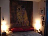 Klimt's The Kiss wall hanging art