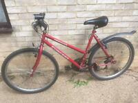 Ladies concept mountain bike for sale