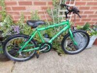 boys green raleigh 20 inch wheel bike