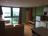 champion league flat - 10 minutes from stadium and Cardiff Bay. City centre flat