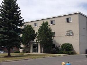 NEWLY RENOVATED 1 BED IN CENTRAL LOCATION! 106- 67 Notch Hill Rd