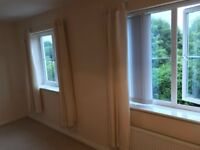 Spacious Room to rent in immaculate shared house All bills included - none smoking