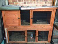 Guinea/ rabbit hutch and accessories