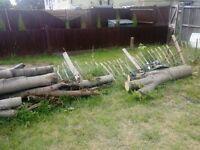 Free Free Free Tree Trunks