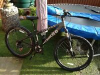 Boys / Mens mountain bike - X Rated A