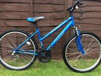 Apollo xc26 mountain bike.