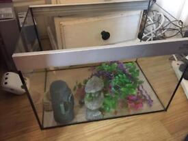30 litre fish tank with accesories, full set up