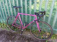 Diamondback Retro Road Bike Frame