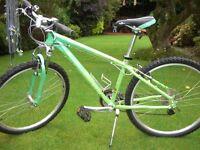 Pinnacle Aura 1.0 2008 Girls/Womans Mountain Bike