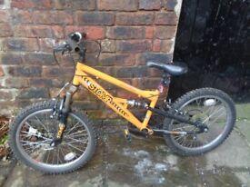 Appollo stomp kids bike