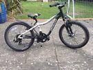 Kids Specialized Hotrock 20 bike
