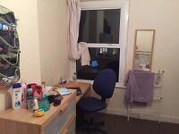 Medic / Postgrad / PhD Double Room for Rent £360 (Bills inc) - in Maindy/Heath, Cardiff