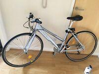 Orbea zeus veneto female bicycle