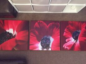 3 x Red Poppy canvases from next