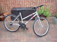 Ladies/Girls Mountain Bike – For Sale
