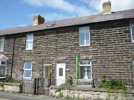 Two bed terraced cottage to rent in Seahouses