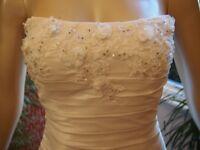 La Sposa Sz10 wedding dress and veil