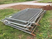 Heras fencing 12 panels and concrete feet