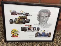 A tribute to Aryton Senna picture