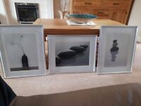 Set of 3 Zen: Still Life Pictures in Silver Frames