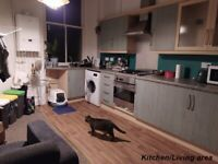 2 bedroom flat for rent in Leith area