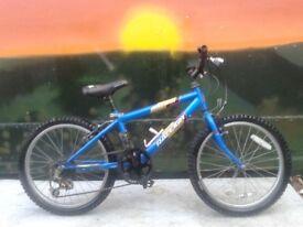 Retro Raleigh Gecko 20 inch Kids Childrens Bike MINT