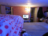 Bills included- Cosy Double room with own living room - In Ashleydown to rent with Cats!