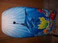 Children's Dolphin Surfing Bodyboard