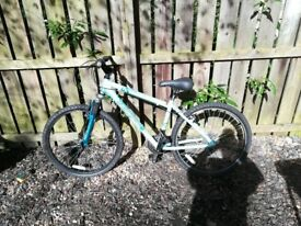 Ladies Blue Bike Dalry