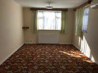Studio, double room and single room!