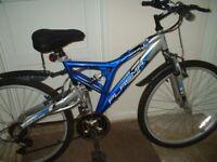 ladeys mountain bike