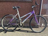 """Various Women's Bikes for sale: 25"""" wheel"""