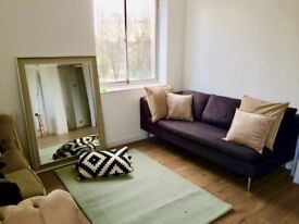 Large bedroom with private living area in Manor Park £750pm