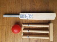 Mini Cricket Set
