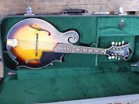 washburn f style m3swk all solid woods mandolin swap trade p/x