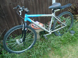 scott specialized bike