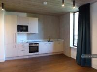 1 bedroom flat in London, London, E8 (1 bed)