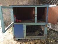 huge homebuilt double rabbit/guineapig hutch