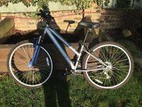 Silver and blue bike