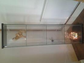 glass shelfing unit