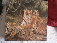 Jig Saw Puzzle, Gibsons, Wildlife 1 The Tiger - Willem De Beer