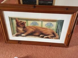 Cute ginger cat picture in quality pine frame. £20.00