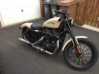 Harley Davidson Iron XL883 - Rare Denim Sand Camo (Low Miles)