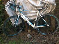 Carrera Virtuso Road Bike