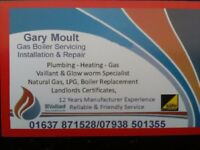 Gas safe Heating and Gas Engineer based in Newquay,Cornwall