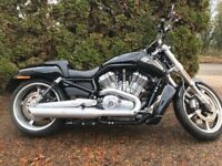 Beautiful vivid black Vrod Muscle Harley Davidson with TAB slip-on's and detachable touring screen