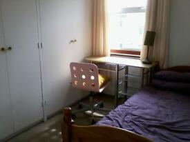 Single room in quiet household for int student