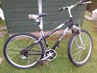 Raleigh voyager bike